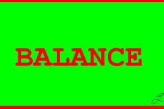 341_BALANCE
